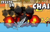 Miami Tubarão
