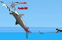 Morsure de Requin