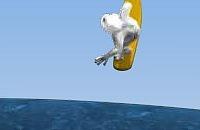 Pinguin meppen 11