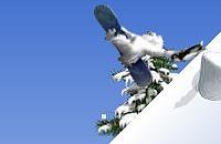 Snowboarden 05