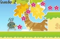 Kiwitiki Flower Paradise