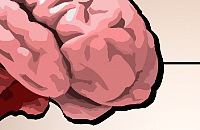 BrainTest