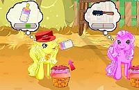Pony Verzorgen