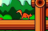 Squirrel Squash 2