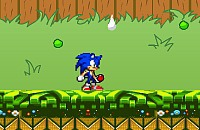 Sonic in Garten