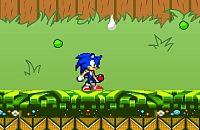 Sonic in de Tuin