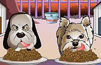 Hund Meisterschaft