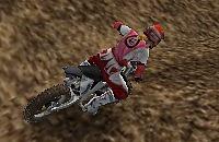 Motorcross circuit