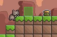 Burger Katze