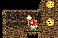 Labirinto di Funghi
