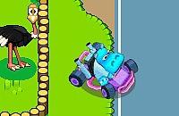 Racer Zoológico