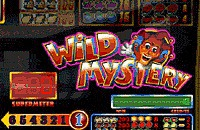 Wild Mystery