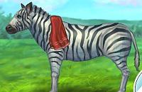 Zebra Cura