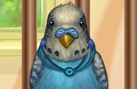 Mon Petit Perroquet