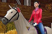 Pferd Spiele
