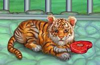 La Mia Tigre