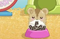 Hamster Amor