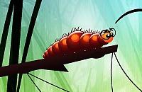 Sonho Larva