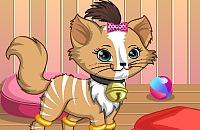 Kitty die Katze