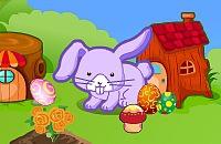 Decora con i Conigli