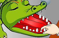 Dents de Crocodile