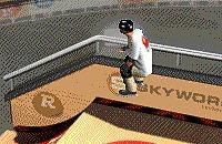 Skate Stunts