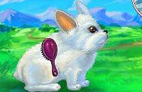 Mein Liebes Kaninchen
