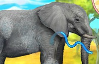 Éléphant Intelligent
