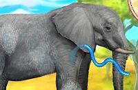 Clevere Elefanten