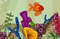Peixe-Dourado