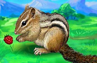 Small Chipmunk
