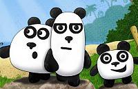 3 Panda's 1