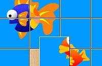 Live Puzzle 1