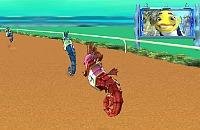 Sharktale Race