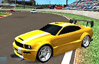 Speed Rally Pro 1