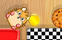 Koekjes Hamster