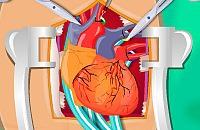Herzchirurgie 2