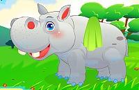 Nijlpaard Verzorgen