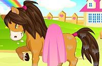 Pony Verzorging 2