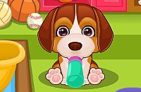 Play:Puppy Care