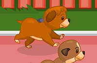 Play:Puppy Hurdling