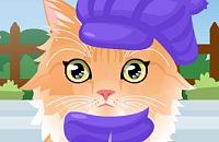 Speel:Kitty Verzorgen