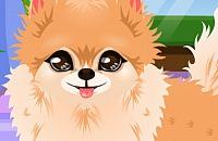 Speel:Puppy Trimmer