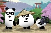 3 Pandas In Giappone