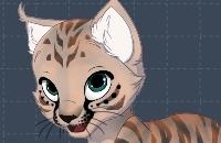 Mijn Kitten