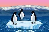 Pinguïn Spelletjes