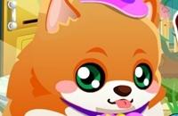 My Cute Pom Welpe