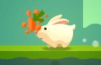Gierig Kaninchen