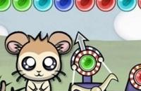 Bubble-Hamster