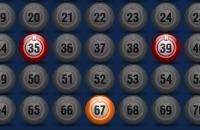 Meglio Bingo